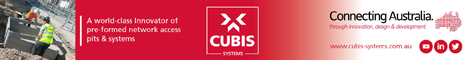 Cubis Systems.