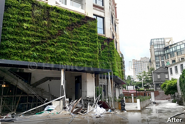 Elmich Green Wall Braves Strongest Typhoon of 2016