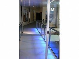 Decorative Translucent Composite Panels By Allplastics